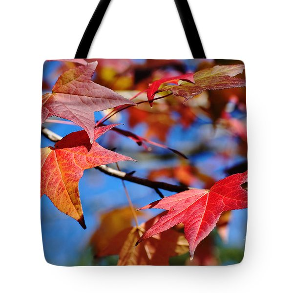 Reds Of Autumn Tote Bag by Kaye Menner