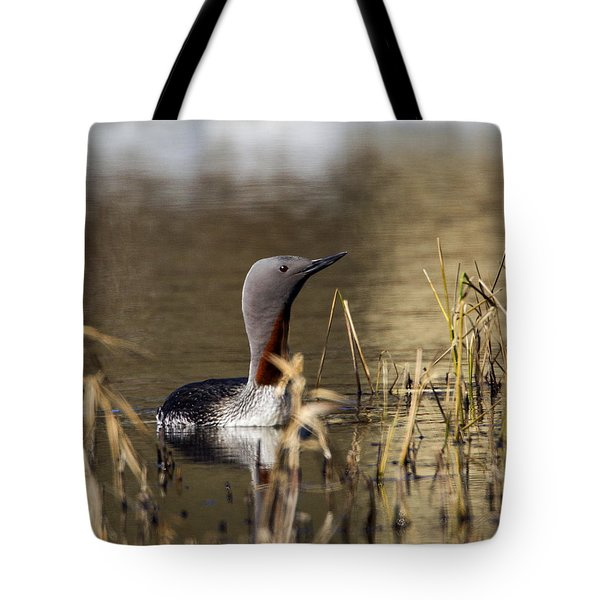 Redthroated Loon Tote Bag