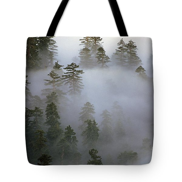 Redwood Creek Overlook With Giant Redwoods  Tote Bag