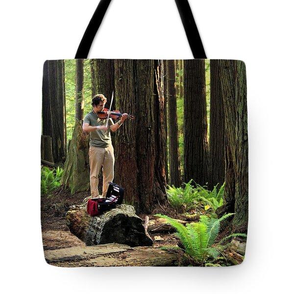 Redwood Symphony   Tote Bag