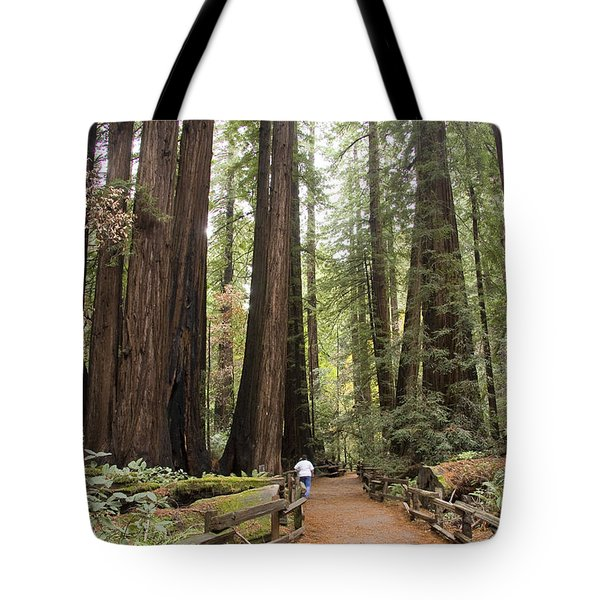 Redwood Trees Tote Bag