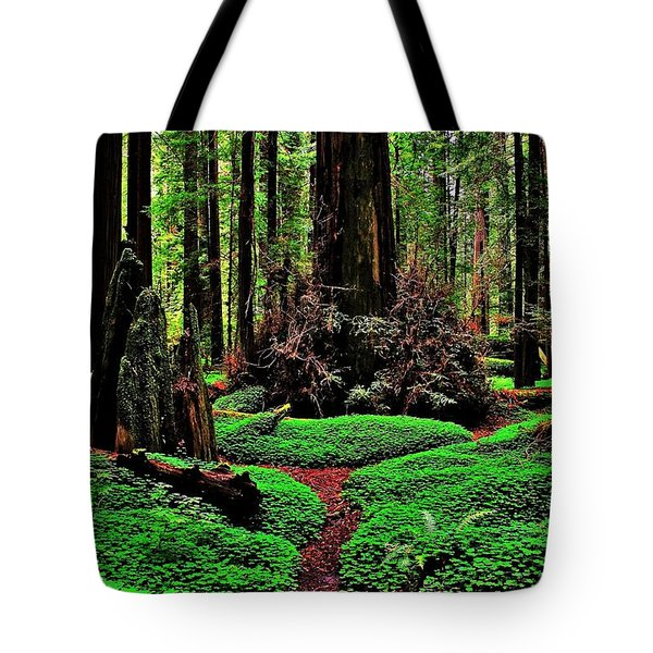 Redwoods Wonderland Tote Bag