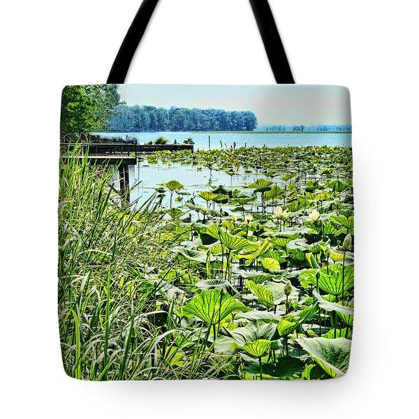 Reelfoot Lake Lilly Pads Tote Bag