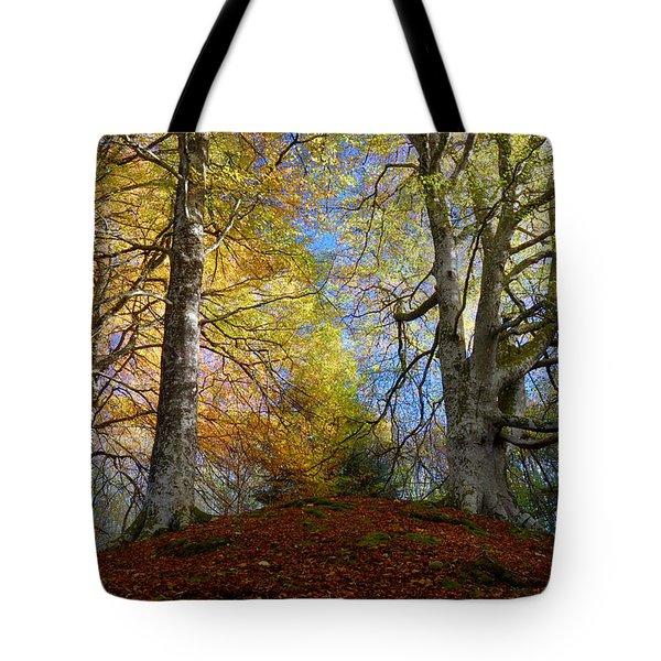 Reelig Forest  Tote Bag