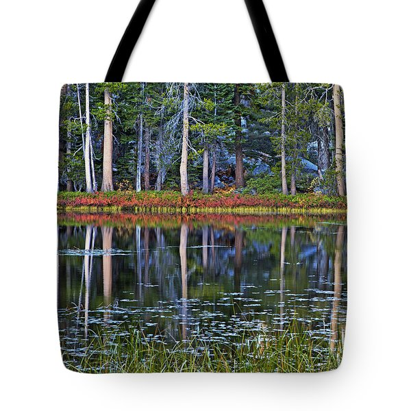 Reflecting Nature Tote Bag