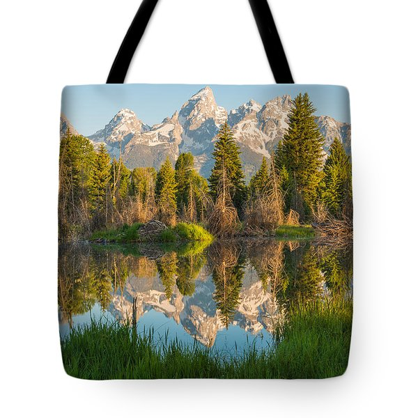 Reflecting On Everything Tote Bag
