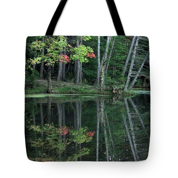 Reflection Tote Bag by Bruce Patrick Smith
