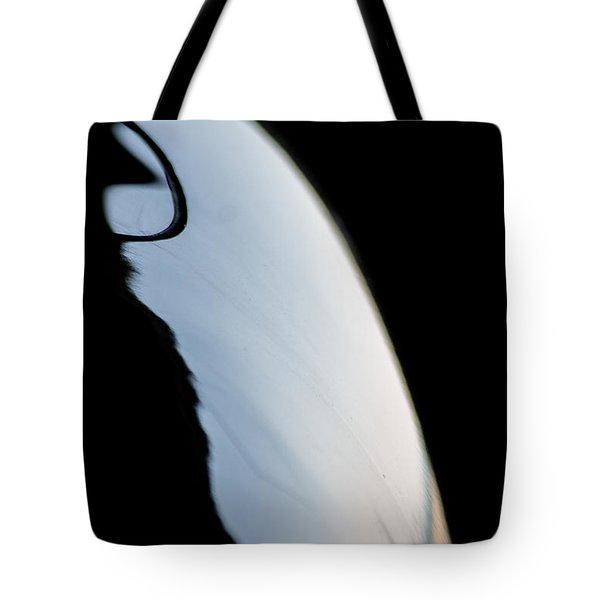 Reflection Cirrus II Tote Bag by Paul Job