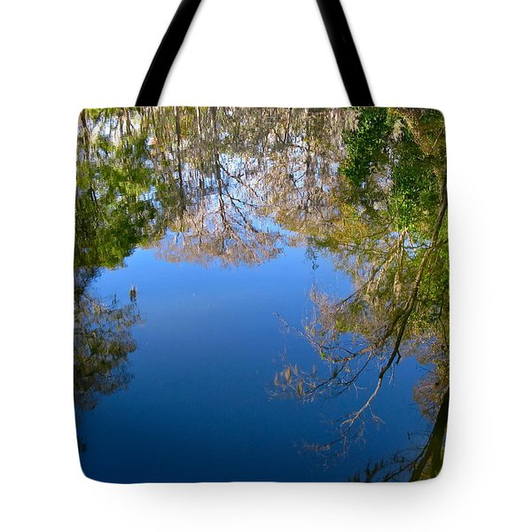 Reflection Tote Bag by Denise Mazzocco