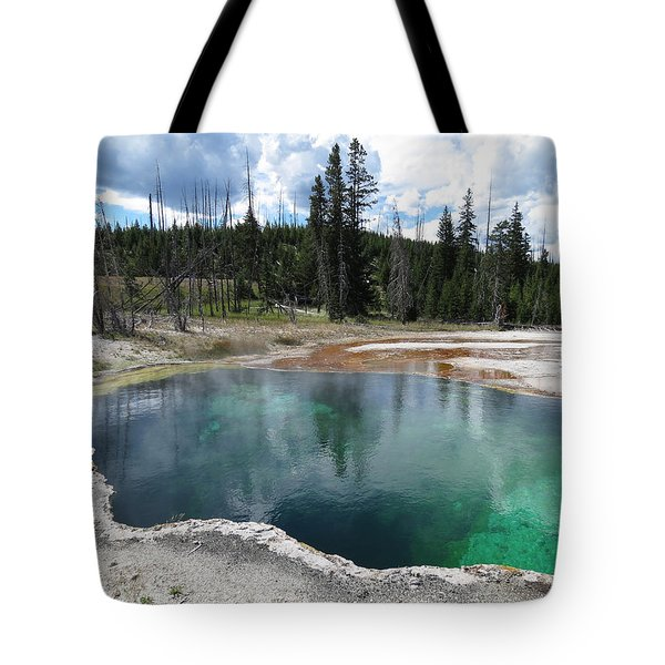 Tote Bag featuring the photograph Reflection by Laurel Powell