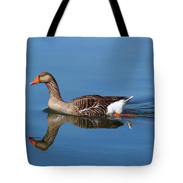 Tote Bag featuring the photograph Reflection by Lynn Hopwood