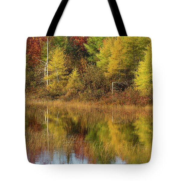 Reflection Of Trees In A Pond, Alger Tote Bag