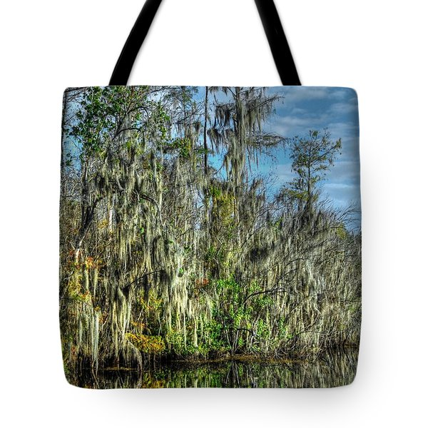 Reflectionist Tote Bag