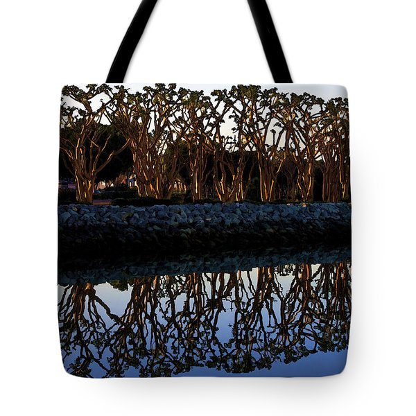 Tote Bag featuring the photograph Reflections In First Light by Gary Holmes