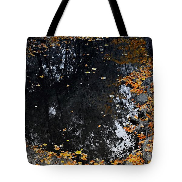 Tote Bag featuring the photograph Reflections Of Autumn by Photographic Arts And Design Studio