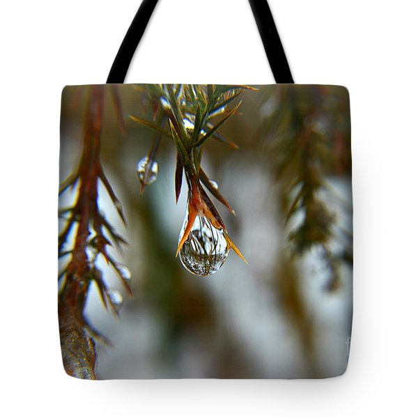 Reflections Of Beauty Tote Bag
