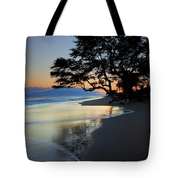 Reflections Of One Tote Bag by Mike  Dawson