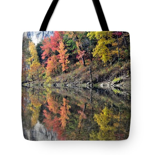 Reflections On The Buffalo Tote Bag by Marty Koch