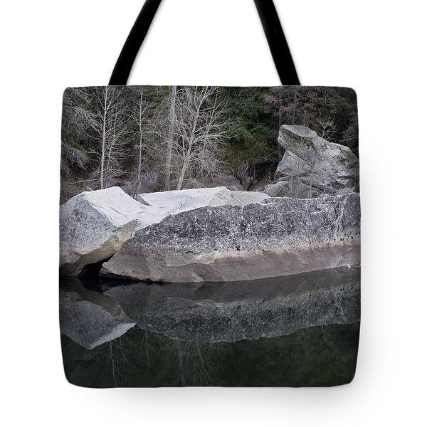 Tote Bag featuring the photograph Reflections by Priya Ghose