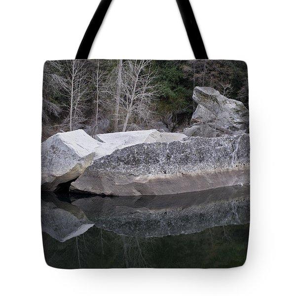 Reflections Tote Bag by Priya Ghose