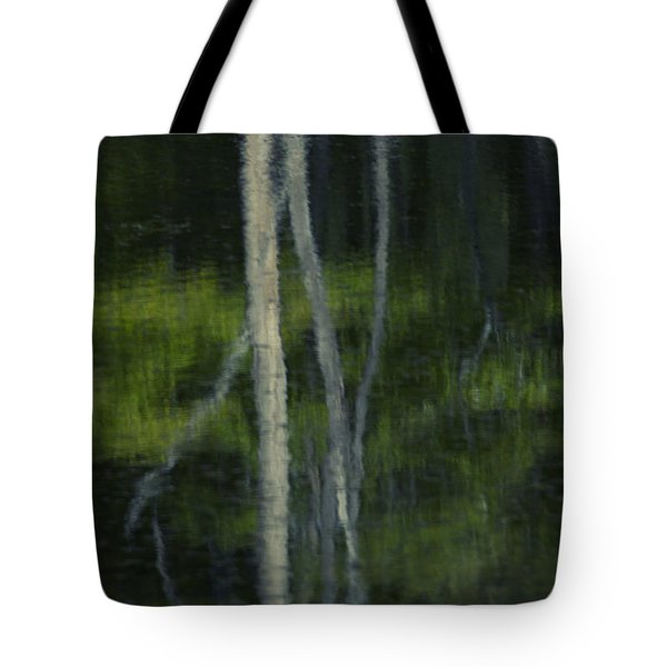 Reflections Tote Bag by Skip Tribby