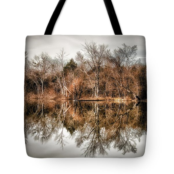Reflective Morning Tote Bag