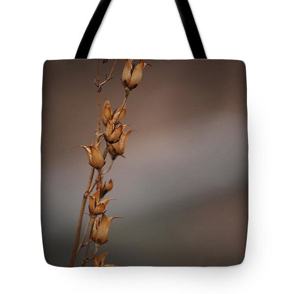 #reggiemiller Tote Bag by Becky Furgason