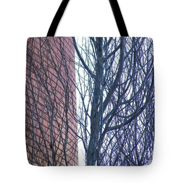 Regular Irregularity  Tote Bag by Brian Boyle