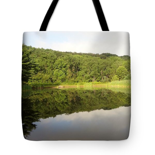 Relaxation Tote Bag by Michael Porchik