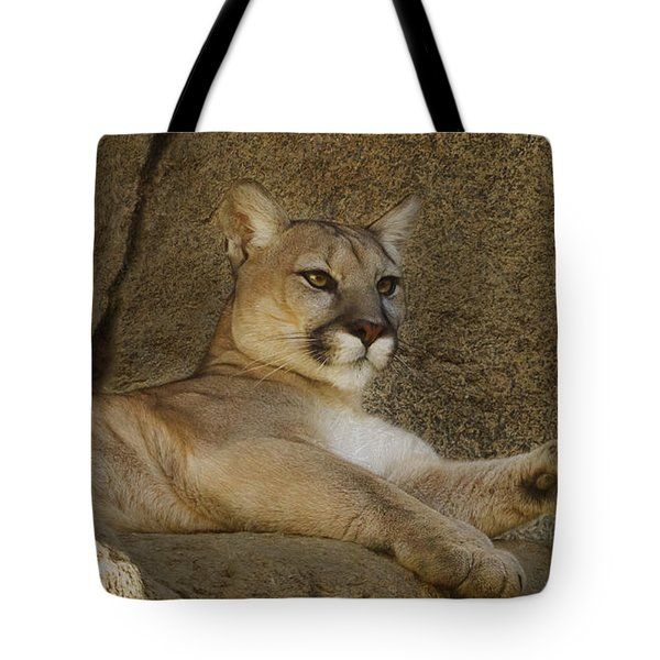 Relaxin' Tote Bag by Brian Cross
