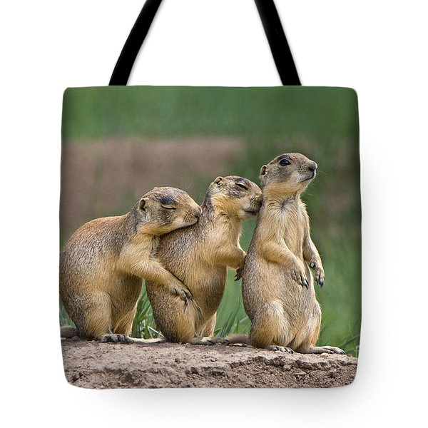 Tote Bag featuring the photograph Relaxing Utah Prairie Dogs Cynomys Parvidens Wild Utah by Dave Welling