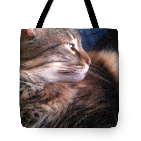 Tote Bag featuring the photograph Remembering Bo by Jacqueline McReynolds