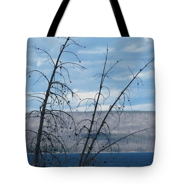 Remnants Of The Fire Tote Bag by Laurel Powell