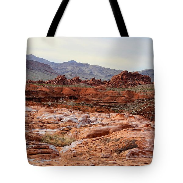Tote Bag featuring the photograph Remote by Tammy Espino