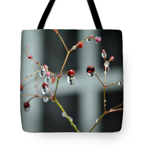 Tote Bag featuring the photograph Repeated Reflections by Kelly Nowak