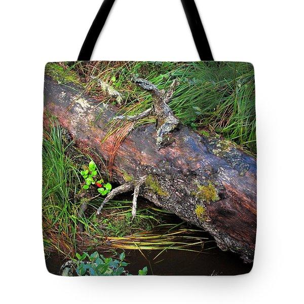 Replenishing The Earth I Tote Bag
