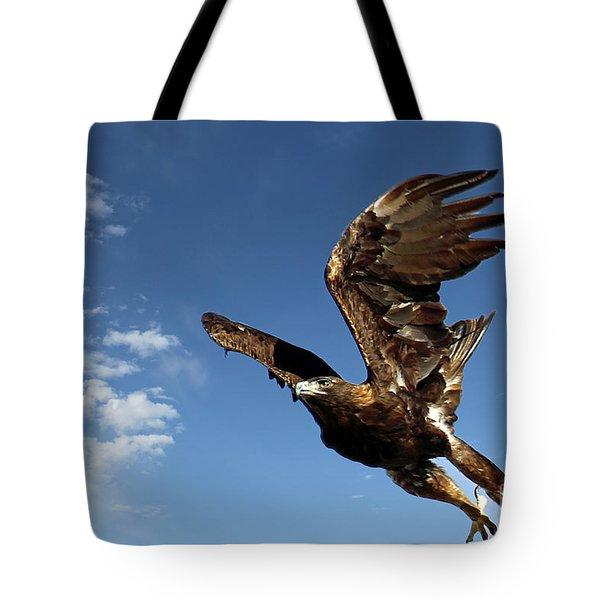 Resolution Tote Bag by Bob Hislop