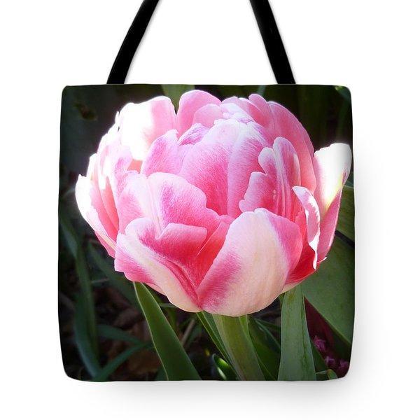 Resplendent Cherry Pink Tulip Tote Bag by Lingfai Leung
