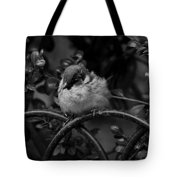 Rest For The Weary Tote Bag