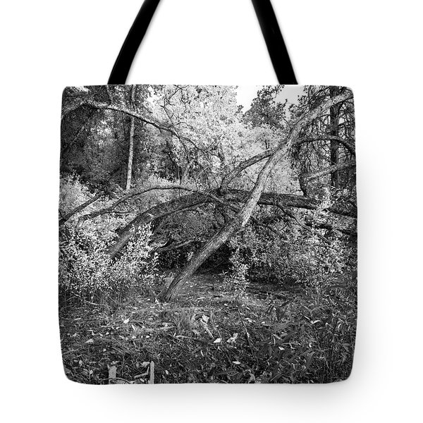 Tote Bag featuring the photograph Tropical Shade by Roselynne Broussard