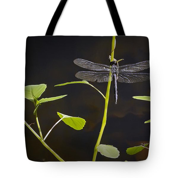 Resting Dragon Tote Bag by Brian Wallace
