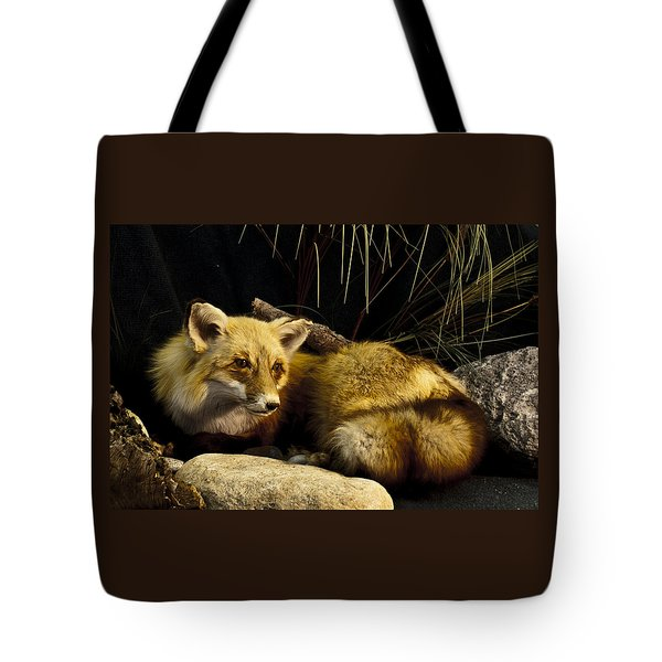 Resting Fox Tote Bag