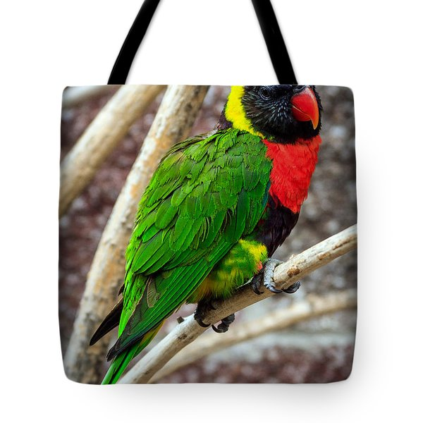 Tote Bag featuring the photograph Resting Lory by Sennie Pierson