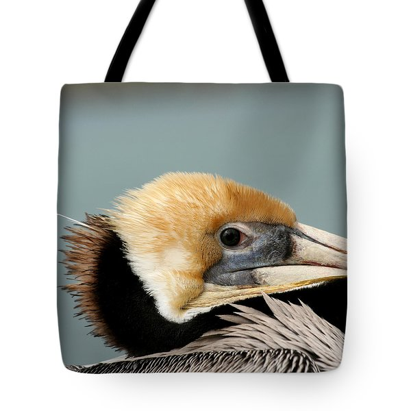 Tote Bag featuring the photograph Resting Pelican by Bob and Jan Shriner