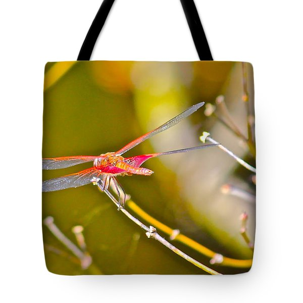 Tote Bag featuring the photograph Resting Red Dragonfly by Cyril Maza