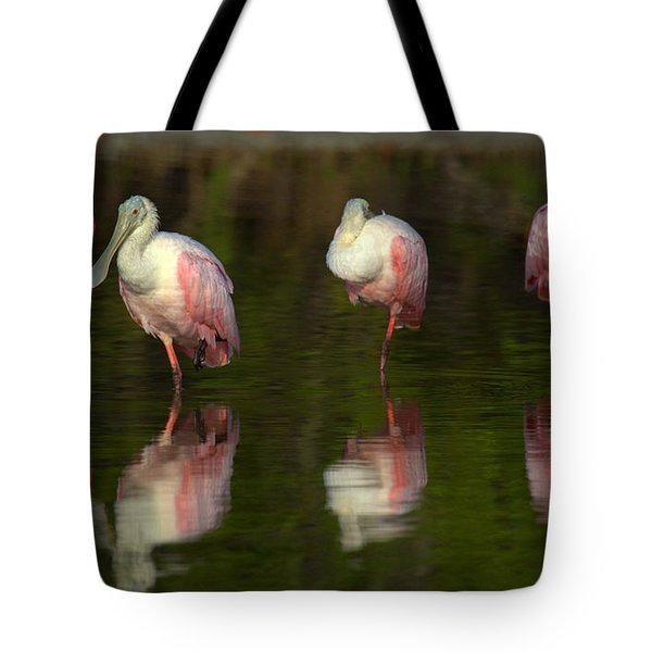 Resting Roseates Tote Bag by Myrna Bradshaw