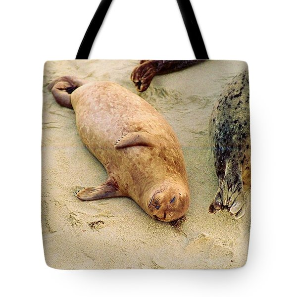 Resting Seal Tote Bag by Kathy Bassett