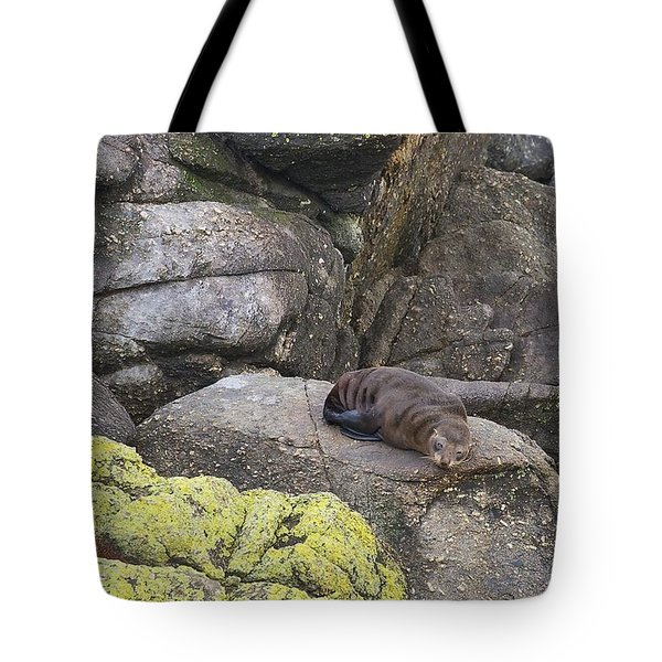 Tote Bag featuring the photograph Resting Seal by Stuart Litoff