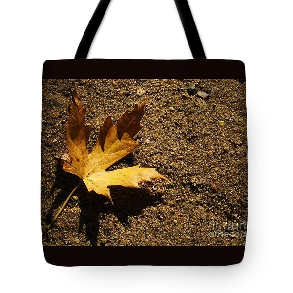 Resting Shadow Sands Tote Bag by J L Zarek