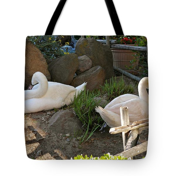 Tote Bag featuring the photograph Resting Swan Mates by Michele Myers